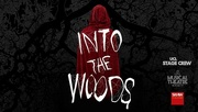 17th Feb 2018 - Into the woods at UCL :)