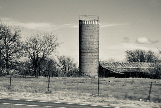 A feed silo in North Texas cattle country by louannwarren