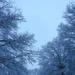 Sky 3 - Snowy sky