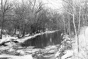 18th Feb 2018 - Etobicoke Creek