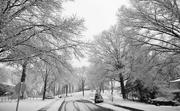 19th Feb 2018 - Snowy street