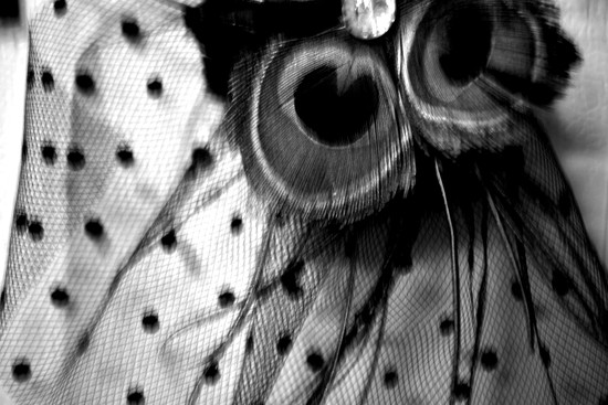 Bright Eye on 365 Project