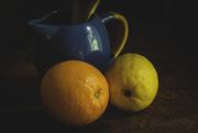 20th Feb 2018 - Orange and Lemon