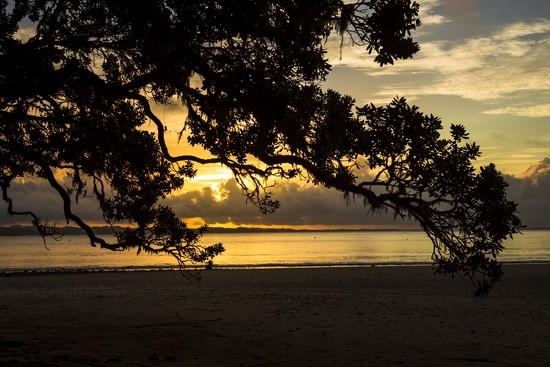 Sunset in New Zealand by shepherdmanswife