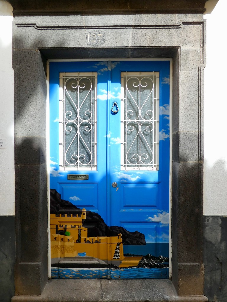 The painted doors by orchid99
