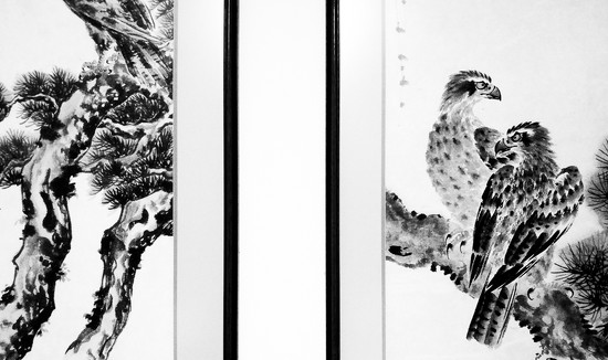 High contrast..the birds by houser934