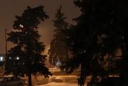 20th Feb 2018 - Early Foggy Morning in my Neighbourhood
