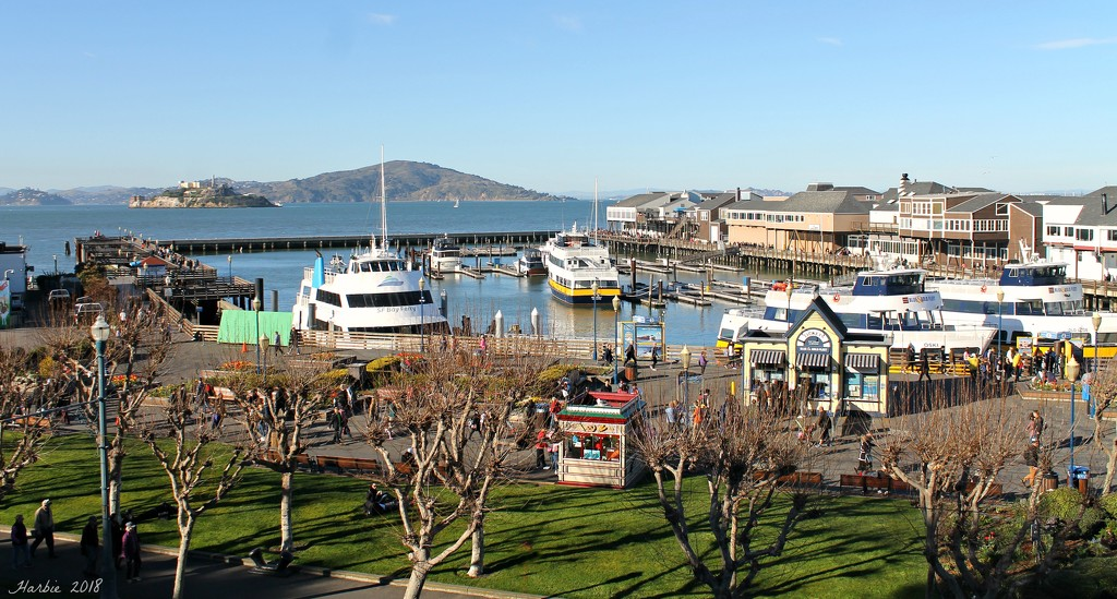 San Francisco Bay and Pier 39 by harbie