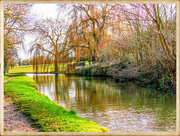 21st Feb 2018 - Winter Reflections On The Canal