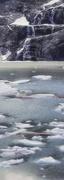21st Feb 2018 - drifting glacier ice