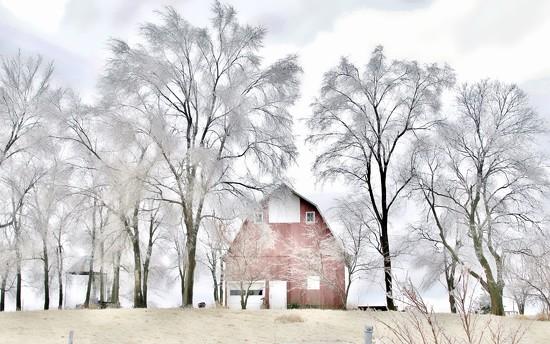 Iowa Winter by lynnz