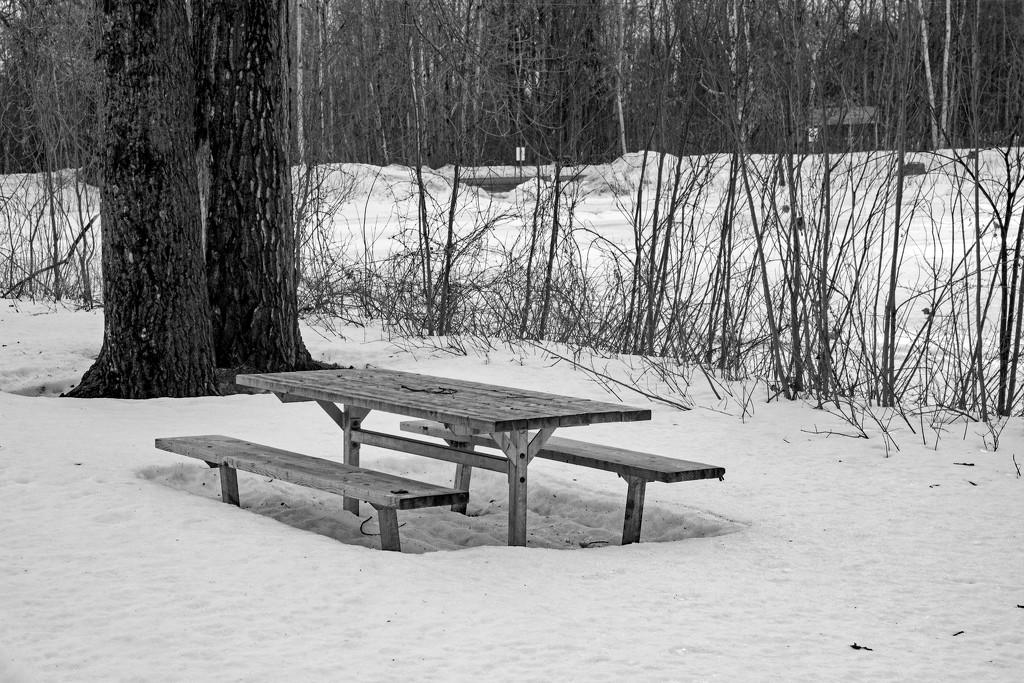 Winter Picnic by farmreporter