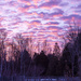 Red Sky in Morning, Sailors Take Warning by farmreporter