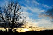 23rd Feb 2018 - Sky 6 - Golden sunset