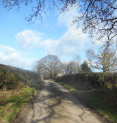 20th Feb 2018 - A country lane...