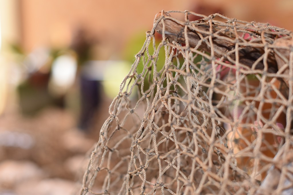 Net But No Fish by mamabec
