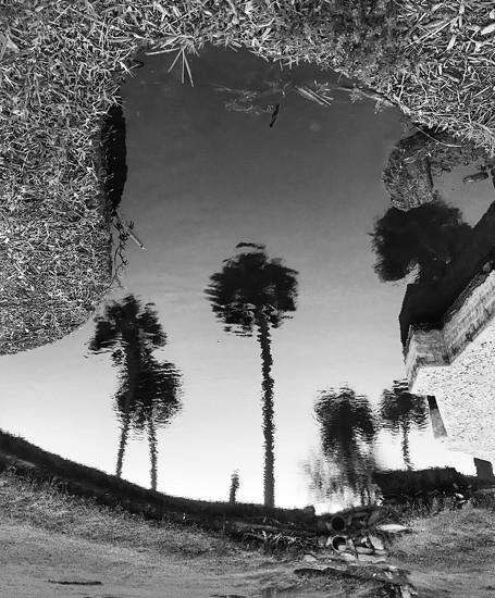 Flipped pond by joemuli