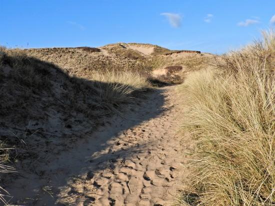 DSCN7506footpath in the dunes by marijbar
