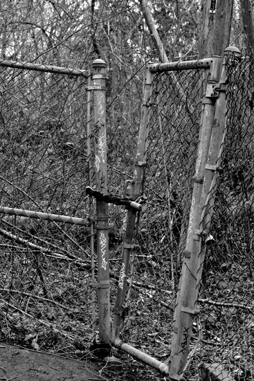 That should keep em out on 365 Project