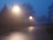 23rd Feb 2018 - Blurry Misty Morning