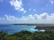 25th Feb 2018 - Guadeloupe cliffs.
