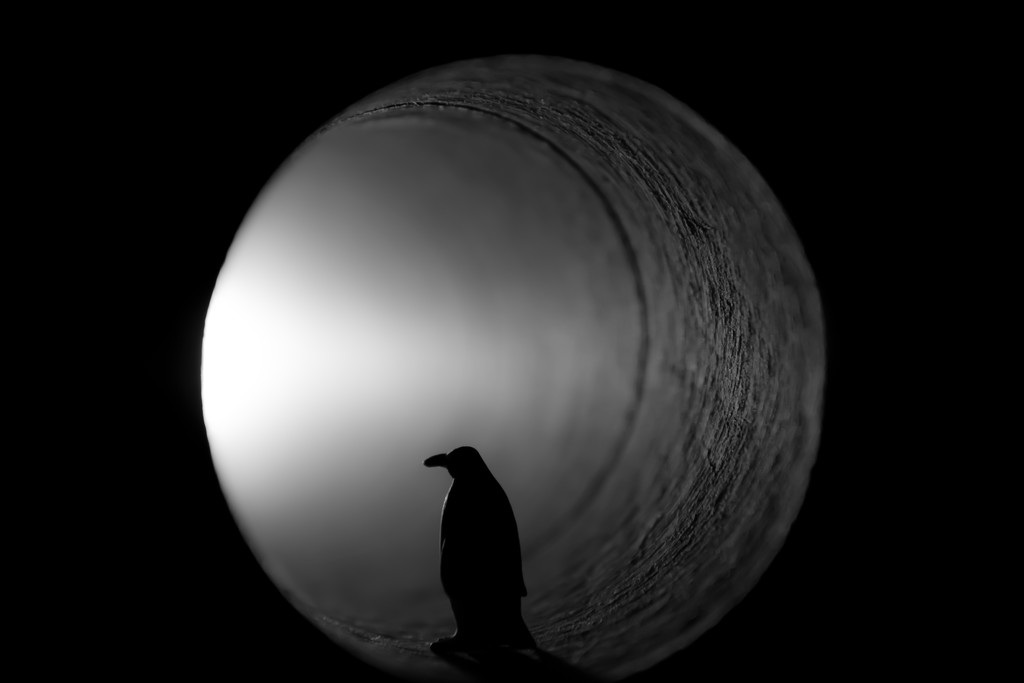 pondering the wormhole... by northy