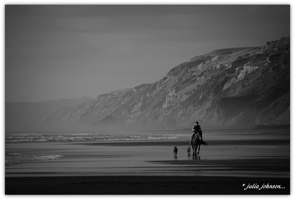 Man, horse, and dogs at the Coast... by julzmaioro