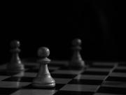 26th Feb 2018 - Pawns