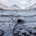 Chilly at Wastwater by ellida