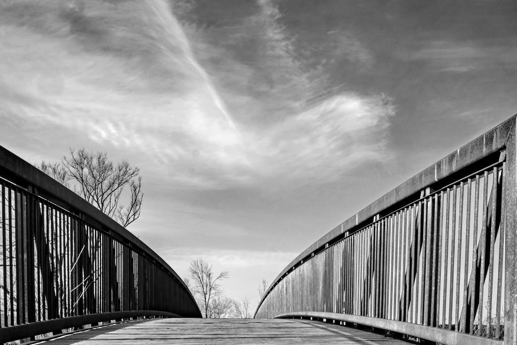 Bridge by farmreporter