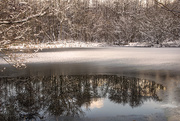 1st Mar 2018 - Icy Reflection