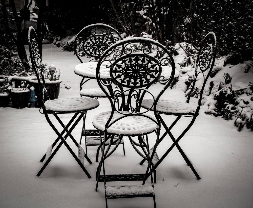 New White Cushions by swillinbillyflynn