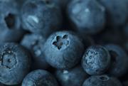 2nd Mar 2018 - Blue - Blueberry