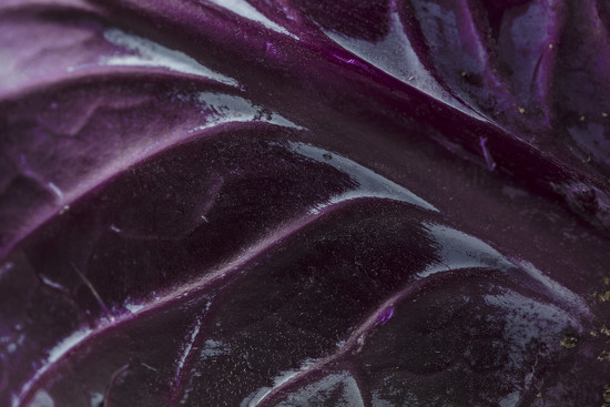 Purple - Cabbage by nicolecampbell