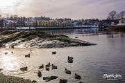 3rd Mar 2018 - Trip along the river