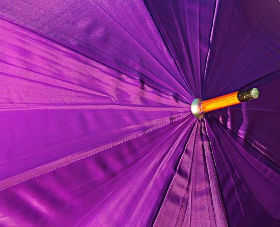 Purple radiance by kiwinanna