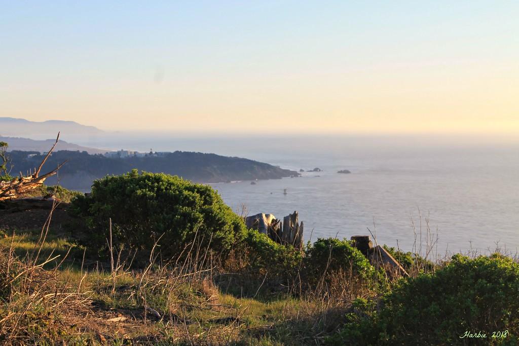 Pacific Ocean View by harbie