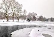 1st Mar 2018 - Birds on the frozen lake in St James's Park