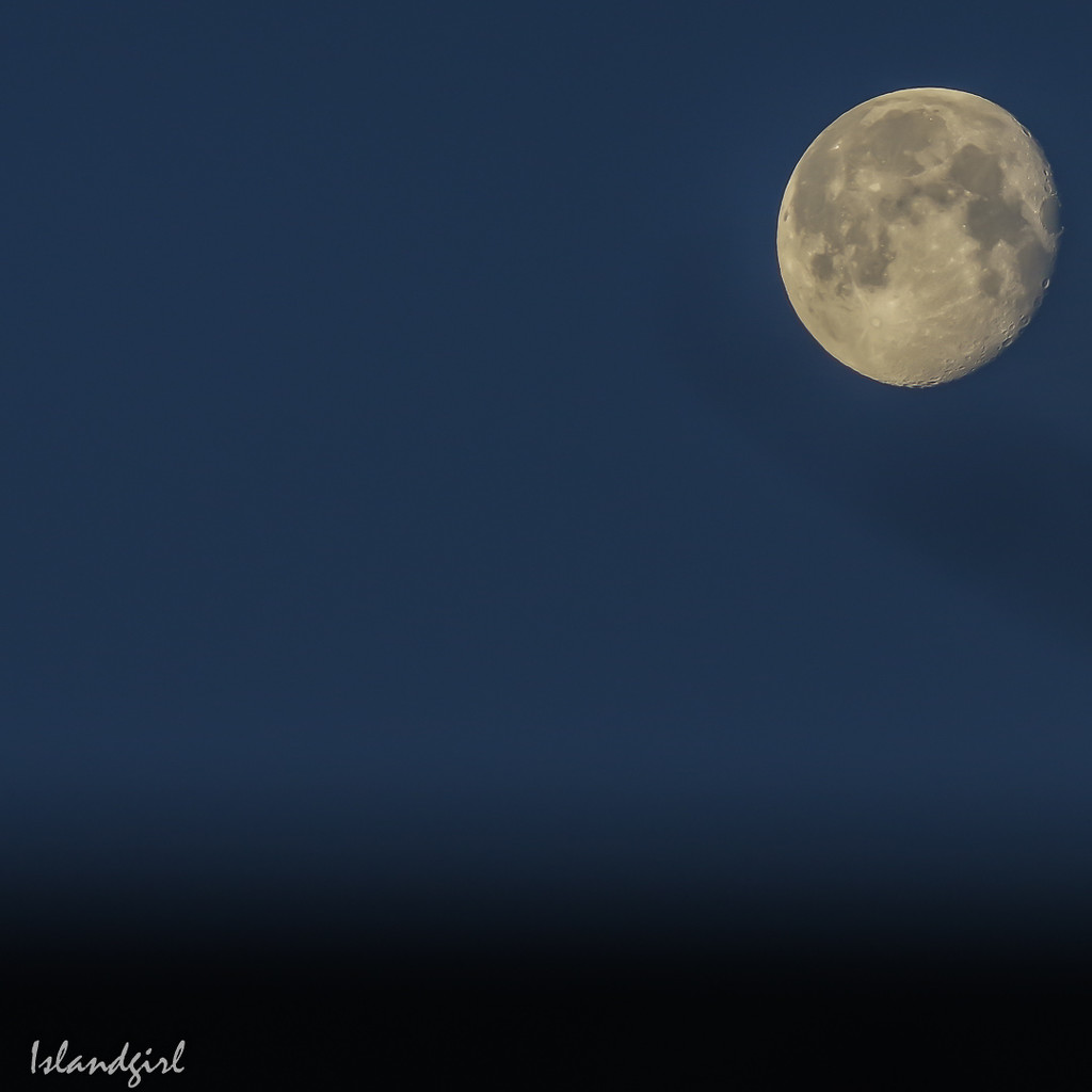 Full moon this morning by radiogirl