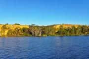 6th Mar 2018 - The beautiful River Murray
