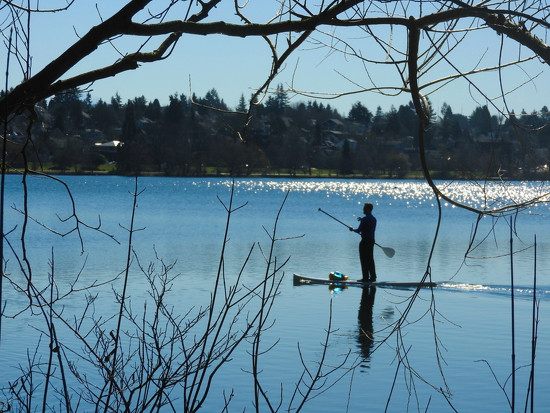 Green Lake Paddle Boarder by seattlite