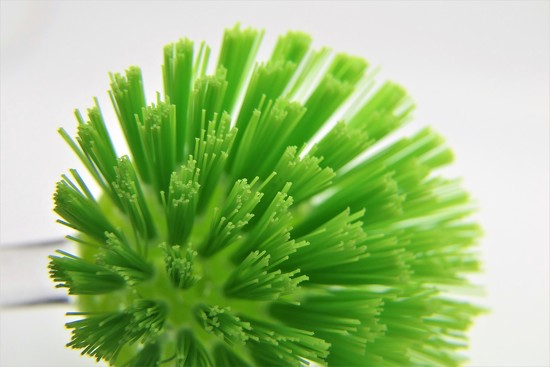 Day 8: Green by carole_sandford