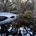 The Long White Bridge at Magnolia Gardens by congaree