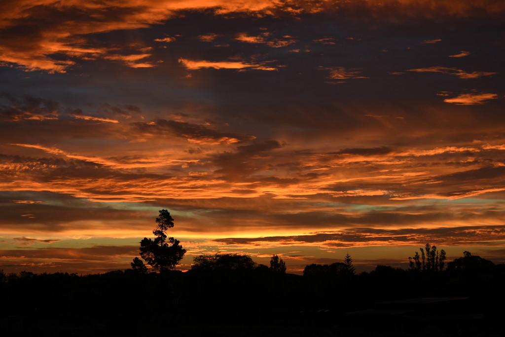 Same Sunset by nickspicsnz