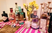 10th Mar 2018 - Gin tasting