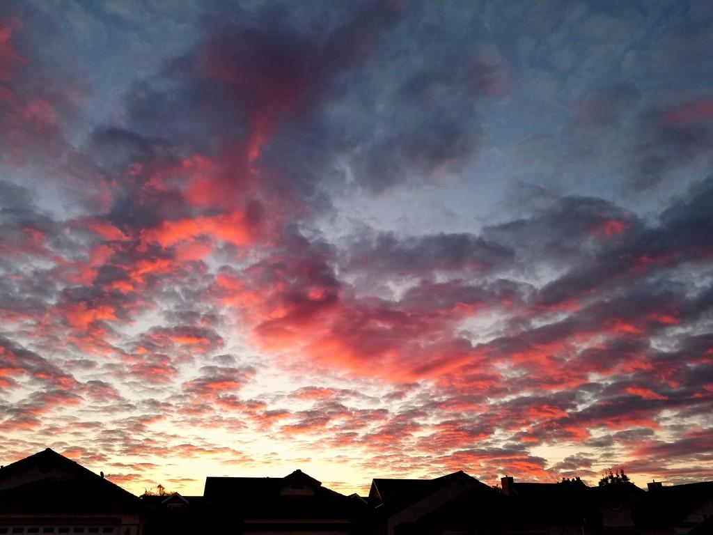 Sunrise Approaches by elatedpixie