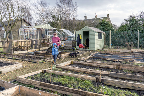 Simon's Allotment by pcoulson
