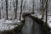 13th Mar 2018 - Snowy Stream