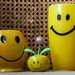 Yellow Smiley Cup family