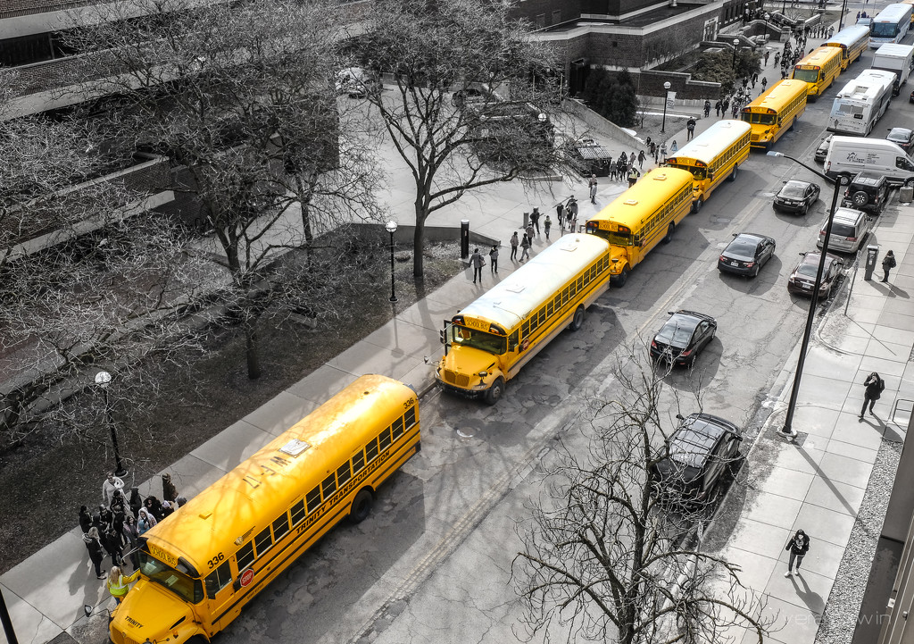 Yellow diagonal by vera365